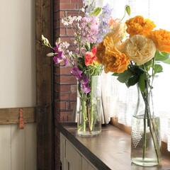 花瓶/フラワーベース/百均/花が好き/花のある暮らし/リミアな暮らし/... たくさんのお花をいただいたので、お部屋に…