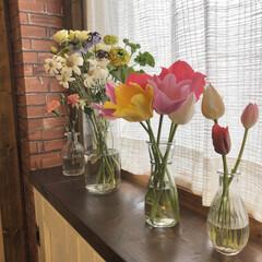 花/春の花/ナチュラルインテリア/花のある暮らし/チューリップ/インテリア/... 昨日は主人の両親を我が家にご招待✨ お花…