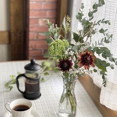 カフェ風インテリア/コーヒー/フレンチプレス/コーヒープレス/ナチュラルインテリア/花のある暮らし/... 初めて行ったお花屋さん とっても素敵でし…