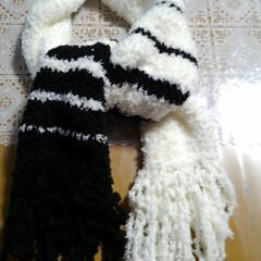 ハンドメイド/セリア セリアの毛糸Miu、白5個、黒2個で マ…(1枚目)