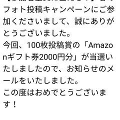 アマゾン/ご褒美/三姉弟/いいね/フォロー大歓迎/LIMIAペット同好会/... リミアからアマゾンギフト券を頂き 沢山の…