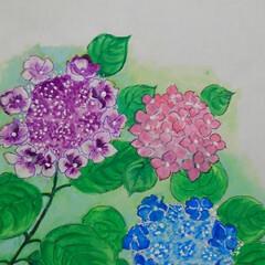 花のある暮らし/初夏 紫陽花やテッセン  初夏を彩る代表作とし…(3枚目)