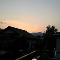 猫がいる生活/にゃんこ同好会 今日も一日お疲れ様  綺麗な夕焼け   …
