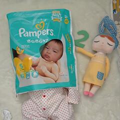 パンパース/家族/フォロー大歓迎 娘、2ヶ月になりました💓 息子は先日5歳…