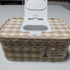 DAISO/リメイク/ナチュラル/ケース/除菌シート DAISOの除菌シートのケースを、布で可…(2枚目)