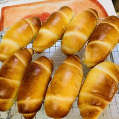 クリームチーズロール/手作りパン/自家製天然酵母/グルメ 自家製天然酵母パン クリームチーズロール…(2枚目)