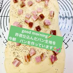 トロけるチーズ/角切りベーコン/手作りパン/自家製天然酵母 good morning🥖   昨夜仕込…(1枚目)