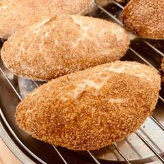 揚げないカレーパン/自家製酵母パン 自家製天然酵母パン ヘルシーな、揚げない…(3枚目)