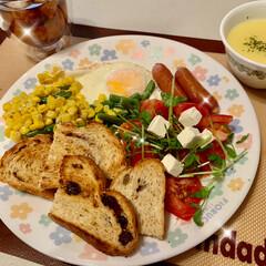 カンパーニュ/天然酵母パン/おうちごはん/うちの定番料理 good morning☕️ 今朝、ぐん…