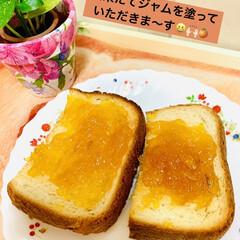 夏みかん🍊/ジャムトースト/手作りジャム/ご飯パン 作りたての夏みかん🍊ジャムを ご飯パント…(1枚目)