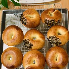自家製天然酵母パン/ベーグル 自家製天然酵母パン ベーグル🥯焼き上がり…
