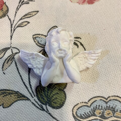 初石膏 初めての石膏に挑戦🖐🏻 石膏と水を混ぜ混…(4枚目)