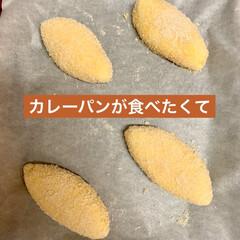 カレー🍛パン/自家製天然酵母パン カレーパンが食べたくて、 朝から、捏ね始…