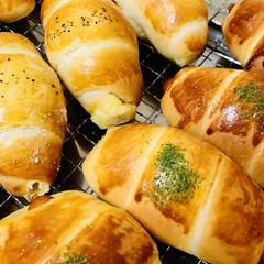 チョコレート🍫/チーズ/ウインナー/ロールパン/自家製天然酵母パン/手作りパン たった今焼き上がり〜╰(*´︶`*)╯♡…(3枚目)