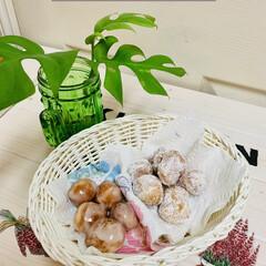 ミニミニドーナツ/イーストドーナツ/手作り ドーナツの真ん中をくり抜いた部分で  ミ…(2枚目)