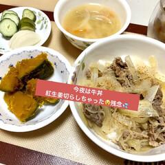 カボチャ/牛丼 今夜は、牛丼と北海道カボチャ🎃 紅生姜切…