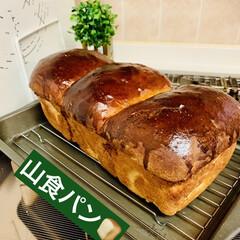 自家製天然酵母パン/山食パン ふあふあに焼き上がりました〜😆✌🏻💖 お…