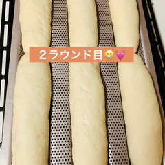 手作りパン/自家製天然酵母パン/お祝い3色パン/ハンドメイド/手作り/ハンドメイド作品/... good morning☀️  昨夜から…(4枚目)