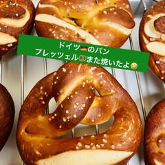 🇩🇪プレッツェル🥨/自家製天然酵母パン 🇩🇪good morning🥨  またま…