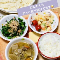ジャガイモ/ミニトマト/菜の花/茄子/玉ねぎ/ごぼう/... 今夜はポテトサラダを作りました〜🎶  け…(3枚目)