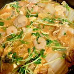 ストウブ鍋/スンドゥブ/うちの定番料理 こんばんは〜^ ^ 今夜は、初めてのスン…
