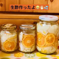 箸休め/グルメ/生酢/ミカン/大根 お正月のご馳走ももうお腹いっぱい食べた後…(1枚目)