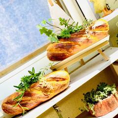 ガーデニング/インテリア/雑貨/フランスパン/造形モルタルパン型/ハンドメイド/... 造形モルタルフランスパン型 やっと💦やっ…(3枚目)