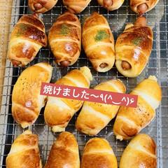 チョコレート🍫/チーズ/ウインナー/ロールパン/自家製天然酵母パン/手作りパン たった今焼き上がり〜╰(*´︶`*)╯♡…(1枚目)