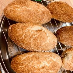 揚げないカレーパン/自家製酵母パン 自家製天然酵母パン ヘルシーな、揚げない…(1枚目)