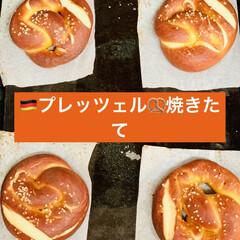 🇩🇪プレッツェル🥨/自家製天然酵母パン 🇩🇪good morning🥨  またま…(4枚目)