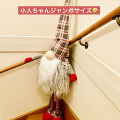 カインズ/Xmas人形/インテリア/クリスマスツリー/階段/ハンドメイド/... 我が家のクリスマスツリー🎄は、 3年目を…(3枚目)