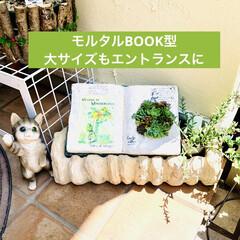 モルタルハウス/ガーデニング/book型/リメ鉢デコパージュ/デコパージュカゴ/モルタル造形/... エントランスに作品集合😆🙌🏻✨  今まで…(2枚目)
