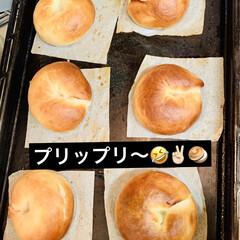 ベーグル🥯/自家製天然酵母パン 🥯good morning🥯  久しぶり…(3枚目)