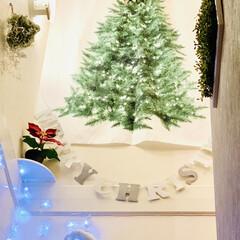 カインズ/Xmas人形/インテリア/クリスマスツリー/階段/ハンドメイド/... 我が家のクリスマスツリー🎄は、 3年目を…(5枚目)
