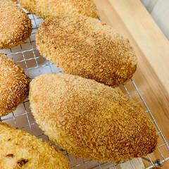 カレー🍛パン/自家製天然酵母パン 自家製天然酵母パン👯♀️カレーパン🎶 …(2枚目)