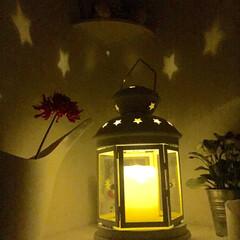 イケア IKEAのランプに癒されます💕💕💕