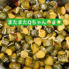 ボリボリQちゃん/手作り またまたQちゃん作ったよ〜🤣✌🏻🌟(1枚目)