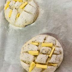 カンパーニュ/自家製天然酵母パン 発酵終了🎶🎶🎶 これから焼きに入りま〜す…
