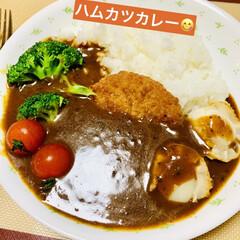 業務スーパー/オリジナル/グルメ/夕食/カレー ハムカツカレー🍛  旦那様が2泊3日の出…