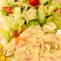 ポテトサラダ🥗/スタミナ丼/夏に向けて/スタミナご飯/スタミナ飯/スタミナ盛り 今夜は、ポテトサラダを作って あとは、簡…
