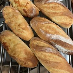 フランスパン/自家製天然酵母パン ミニフランス焼けてます😜✋🏻 プレーン&…