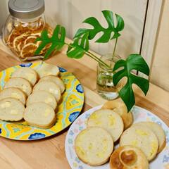 型焼き/チーズ/さつま芋🍠/自家製天然酵母パン カットしました〜♪(๑ᴖ◡ᴖ๑)♪💕  …