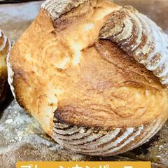 プレーン/パン製作/ブルーベリー/カンパーニュ/自家製天然酵母/グルメ/... 🥐自家製天然酵母パン    ミニカンパー…(4枚目)