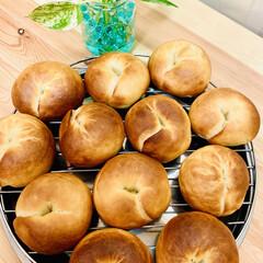 ベーグル🥯/自家製天然酵母パン 🥯good morning🥯  久しぶり…(4枚目)