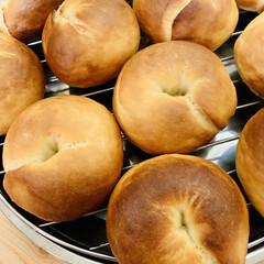ベーグル🥯/自家製天然酵母パン 🥯good morning🥯  久しぶり…(2枚目)