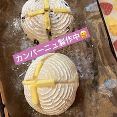 ブルーベリー/パン製作/カンパーニュ/自家製天然酵母/グルメ/暮らしを楽しむ/... まだ2日前にストウブ鍋で 焼いたカンパー…(1枚目)