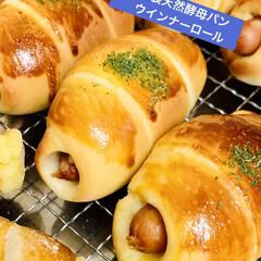 チョコレート🍫/チーズ/ウインナー/ロールパン/自家製天然酵母パン/手作りパン たった今焼き上がり〜╰(*´︶`*)╯♡…(2枚目)