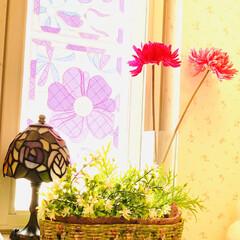 インテリア/ホームセンター/デコパージュ/花籠/ハンドメイド/手作り/... ハット形花籠デコパージュ  先週大型ホー…(7枚目)