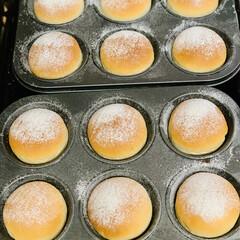 お持たせ/チーズ/丸パン/自家製天然酵母/手作りパン 2ラウンド目  丸パンチーズ入り👩🍳✨…(2枚目)