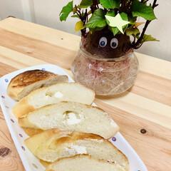 クリームチーズ/フランスパン🥖/自家製天然酵母パン/七夕インテリア/スタミナ丼/夏に向けて/... 焼き上がった途端にもう旦那様が立って待っ…(2枚目)